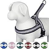 Blueberry Pet Geschirre Klassisch Einfarbig Neopren Hundegeschirr mit Zugentlastung in Lila-Grauem Jacquardmuster 65-80cm Brust, Passender Hundehalsband & Hundeleinen erhältlich separate