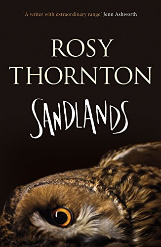 Sandlands by [Thornton, Rosy]