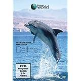 Ultimate Guide - Alles über Delfine - Discovery World