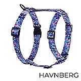 HAVNBERG Hundegeschirr Gr. M, Brustumfang 48cm - 70cm, Brustgeschirr, Geschirr für mittelgroße Hunde, Breite 2,5cm, lila, Geometrisches Dreieck Design