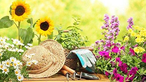 49 teiliges Gartenwerkzeugset mit Korb und Tasche - 4