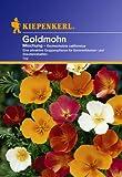 Eschscholzien Goldmohn (Mischung)