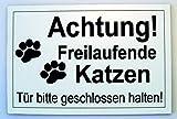 Achtung Freilaufende Katzen Gravur Schild 15 x 10 cm Katzenschild Katze Neu