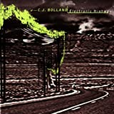 Songtexte von CJ Bolland - Electronic Highway