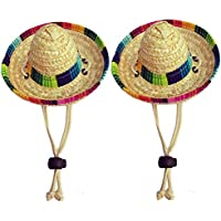 Amazon.it  sombrero messicano - Cani  Prodotti per animali domestici c16d9560a207