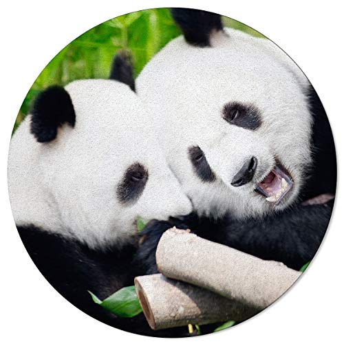 SunnyM Runde Teppiche mit süßem Panda-Motiv, Bambus, weich, für Innen/Wohnzimmer/Schlafzimmer/Kinderspielzimmer/Küche, rutschfeste Gummiunterseite, Yoga-Teppiche, Bear17s9854, 6'x6'