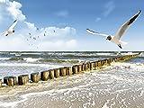 Artland Kunstdruck I Poster Device Ostsee Landschaften