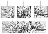 Monocrome, Pusteblume bedeckt mit Tropfen inkl. Lampenfassung E27, Lampe mit Motivdruck, tolle Deckenlampe, Hängelampe, Pendelleuchte - Durchmesser 30cm - Dekoration mit Licht ideal für Wohnzimmer, Kinderzimmer, Schlafzimmer