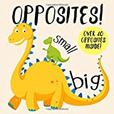 Opposites!: A Fun Early Learning Book for 2-4 Year Olds