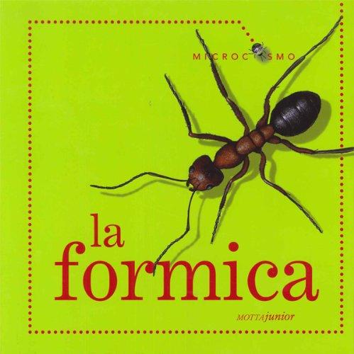 la-formica