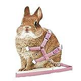 orchidtent verstellbar Pet Hund Katze Kaninchen Polka Walking Geschirr & Leine Set, Best für Outdoor Running und Walking, rose
