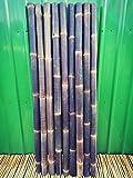 Bambusrohr Wulung Bambusstange Bambus Riesenbambus 1 x 6-7 cm x 2 m Wulung