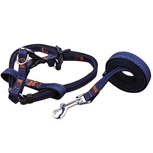 Bild von: REXSONN® Haustier Hundeleinen Führleine Hunde Jogging-Leine Sportleine pet dog cat Collar Lead Harness - denim - super zum Laufen, Joggen, Wandern