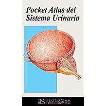 Sistema Urinario, Pocket Atlas: Full Ilustrado, 2016