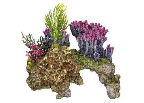 """Nobby 28064 Aquarium Dekoration Aqua Ornaments \""""KORALLE\"""" mit Pflanzen; L15,5 x B9 x H10,5 cm"""