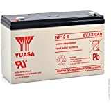 Yuasa - Batterie plomb AGM NP12-6 6V 12Ah YUASA - Batterie(s)