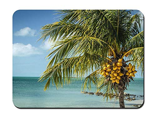 Mouse Pad - Long Island Bahamas Sea - Customized Rectangle Non-Slip Rubber Mousepad Gaming Mouse Pad -