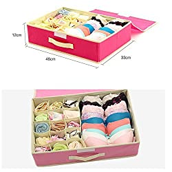 House of Quirk 15+1 Compartment Cell Foldable Storage Box type Non-Smell Drawer Organizer 15 grids + 1 for underwear Closet Storage for Socks Bra Tie Scarfs - Baby Pink