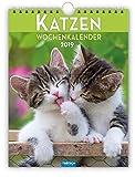 """Wochenkalender """"Katzen"""" 2019 als Wandkalender Wochenplaner"""