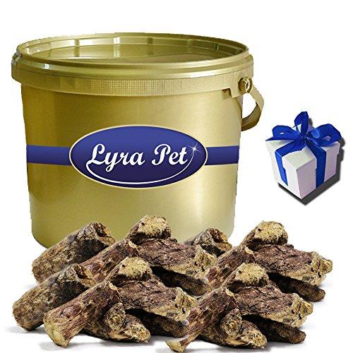 fettarmes hundefutter Lyra Pet 3 kg Rinderlunge getrocknet Dog fettarm Hundefutter Kausnack + Geschenk