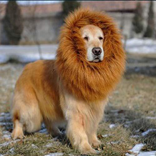 Mimagogo Halloween Rollenspiele Hund Kostüm Lion Perücken mit Ohren Haar ()