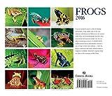 Image de Frogs 2016 Calendar