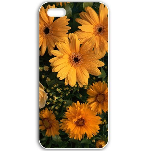Apple iPhone 5 5S Cases Customized Gifts For Holidays Holidays International Womens Day Flowers beloved woman...
