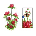 """SODIAL(R) Red Simulated Water Lily Lotus Plastic Plant Ornament 10"""" for Fish Tank Aquarium 5"""