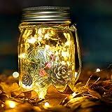 Solarlampen für Garten Solar Mason Jar Licht Solarleuchten Lampions,20 Led Lichterkette mit künstlichen Tannenzweigen im Glas Einmachglas Licht für Weihnachten Hof Wand Tisch Baum Party Geschenk