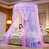 Alrededor de la pantalla de la mosca,Viento princesa bigote de color pantalla red cortinas landing net para solo para camas king size-F Queen2