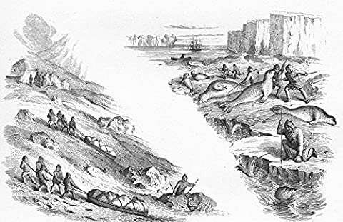 ARCTIC. Sledge Travel(Osborne's Journal); Seal hunt - c1849 - old