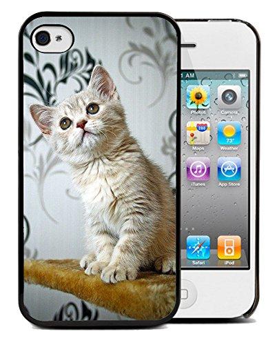 Coque silicone BUMPER souple IPHONE 4/4s - Chat cat animal adorable minion motif 5 DESIGN case+ Film de protection OFFERT