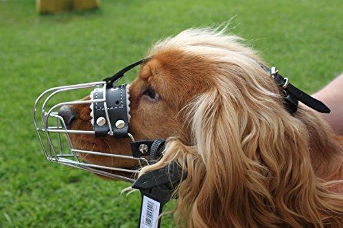 Nuevo Metal cesta de alambre perro Bozal para Cocker segunda mano  Se entrega en toda España