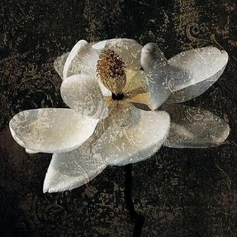 Impresión de Arte Fino en lienzo : Magnolia II by Seba, John - Medio (112 x 112 Cms)