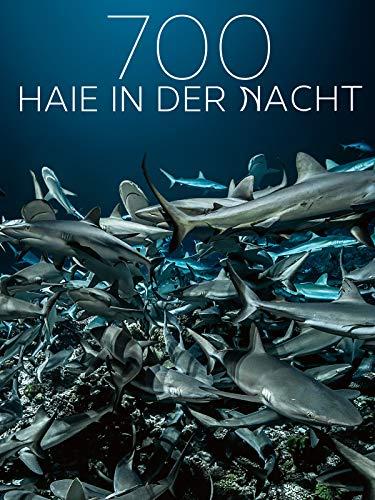 700 Haie in der Nacht - 100-meter-video