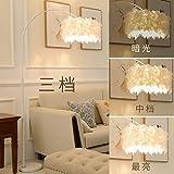 Plume Lampadaire Chambre Vent Fille Pêche Lampe Filet Rouge Salon Lit Lampe De Table Verticale Lampe De Plume