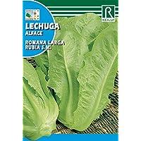 ROCALBA Saatgut Salat R.L. Blondine 10UD