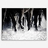 ge Bildet !!! SENSATIONSPREIS Hochwertiges Leinwandbild - Pferde - Schwarz weiß - 30 x 20 cm Einteilig | Angebote der Woche Geschenke für Frauen Geschenke für männer |