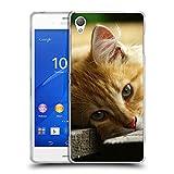 Just Phone Cases Schutz Hülle TPU Case Schutzhülle Silikon Tasche Dünn Transparent // V00004287 Katze liegend auf Holzbrettern // Sony Xperia Z3 D6603 D6633 D6643 D6653 D6616