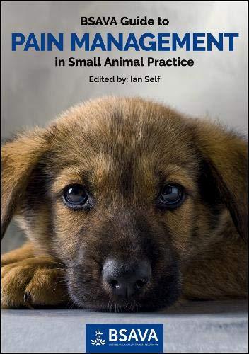 Management in Small Animal Practice (Bsava British Small Animal Veterinary Association) ()