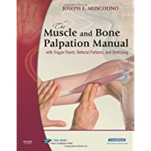 The Muscle and Bone Palpation Manual with Trigger Points, Referral Patterns and Stretching, w. 2 DVD-ROMs