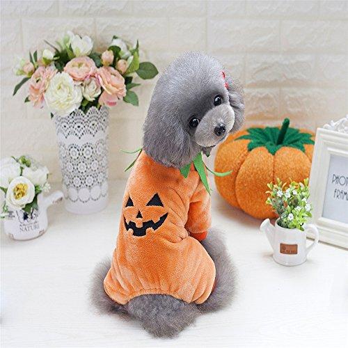 Hundekleidung,Finoki Hundemantel Hundejacke Hundepullover HaustierKleidung Kürbis Kostüm Plüsch Hund Bekleidung für Halloween (M)