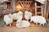 5 x Wollschafe, Schafe weiss für 9-11 cm Figuren (NEU mit plüschiger Oberfläche), niedlich - süße Dekoschafe für Krippen und Stall