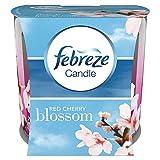 Febreze Geruchsbeseitigende Duftkerze Rote Kirschblüte, 2er Pack (2 x 100 ml)