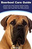 Boerboel Boerboel Care Guide Featuring: Boerboel Puppies, Breeders, Rescue, Temperament, Weight, Dog Price, Adoption, Size, Colors, Diet, Cost, Photos and More