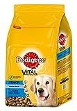 Pedigree Senior 8+ Hundefutter Huhn, Reis und Gemüse, 1 Beutel (1 x 6,5 kg)