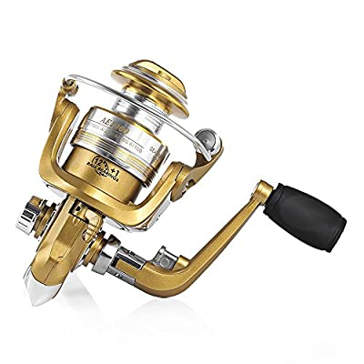 Wenquan,Fishdrops 12 + 1BB Aluminum Alloy Golden Fly Fishing Reel with Left Right Interchangeable Handle from Wenquan