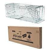 D4P Display4top Gabbia Trappola Professionale per Animali, Catch And Rabbit, Squirrel, Raccoon (79 x 28 x 33cm)