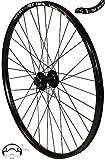 REDONDO 29 28 Zoll Vorderrad Laufrad WTB Felge Shimano Deore M525 Schwarz Disc
