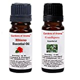 Gardens of Aroma - Hibiscus 10ml Essential Oils. Gandhpura Essential Oil 10ml, Luxurious and Premium, High Quality, and Undiluted, Organic and Therapeutic Grade - Exceptional Choice for Aromatherapy, Massage and Aroma Diffusers - Suitable for All Skin Types - Use for Hair Care and Skin Care.